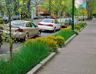 Streetscape Green Infrastructure Digest